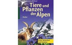 Tiere-und-Pflanzen-Alpen_Artikelbild