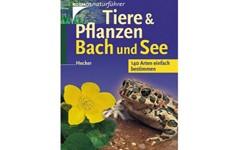 Tiere-und-Pflanzen-Bach-und-See_Artikelbild