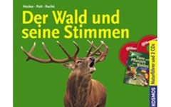 Wald-Stimmen_Artikelbild