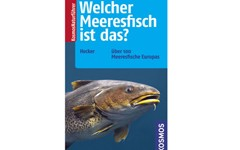 welcher-meeresfisch-ist-das artikelbild