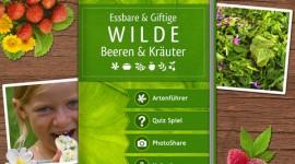 app wilde Beeren und Kräuter