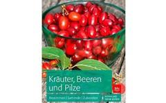 Artikelbild - BLV Kraeuter
